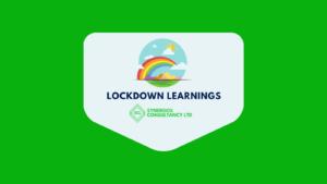 Synergos lockdown learnings social media (1)